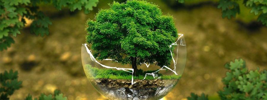 Prendre au sérieux la crise environnementale. De quoi sera fait demain?