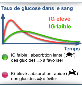Index glycemique